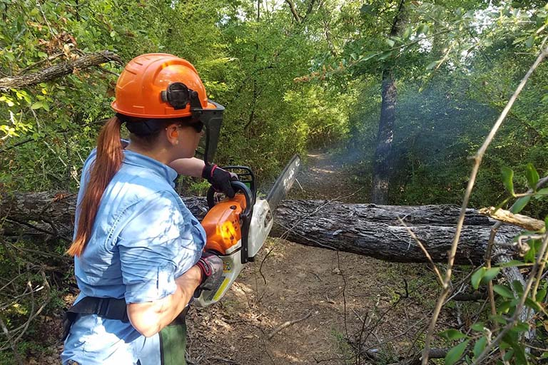 Intern cutting a broken limb with a chainsaw at the Fort Worth Nature Center