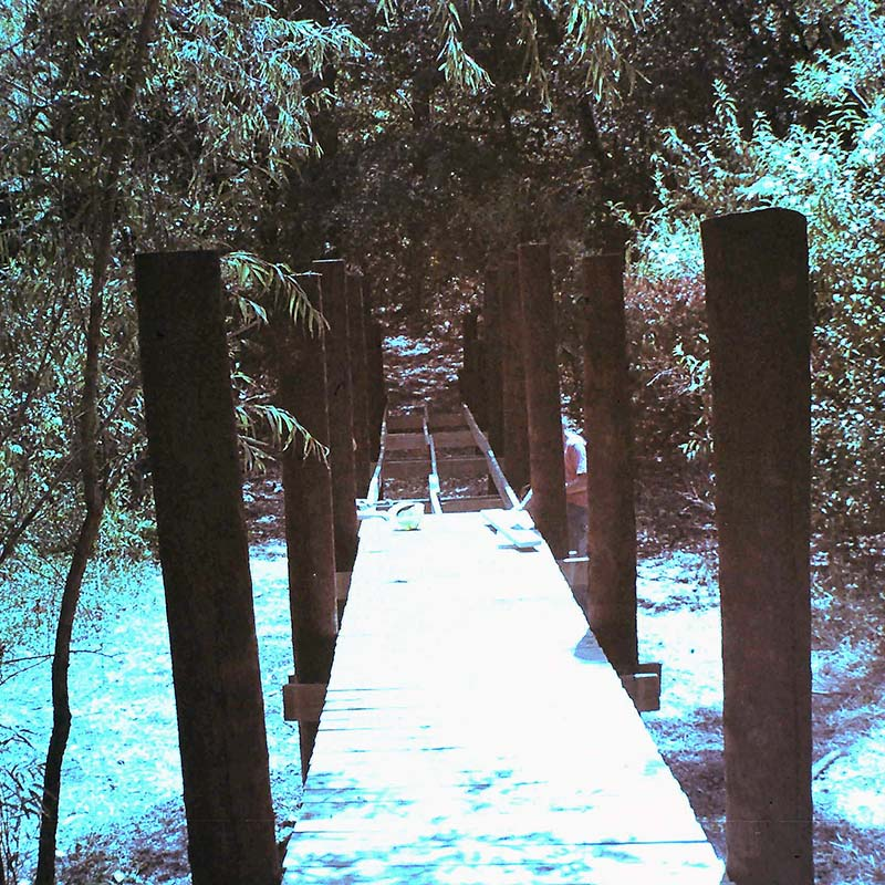 Old 1973 photo of the original Boardwalk bridge under construction at the Fort Worth Nature Center