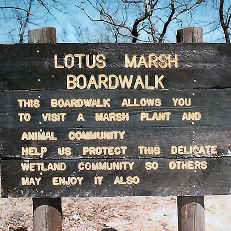 Old 1976 photo of the original Lotus Marsh Boardwalk sign at the Fort Worth Nature Center