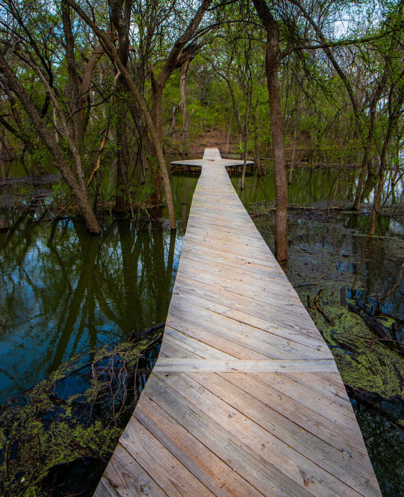 Wooden bridge crossing a marshy area on Riverbottom Trail at the Fort Worth Nature Center