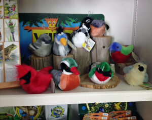 Display of stuffed birds at the Friends Gift Shop at the Fort Worth Nature Center