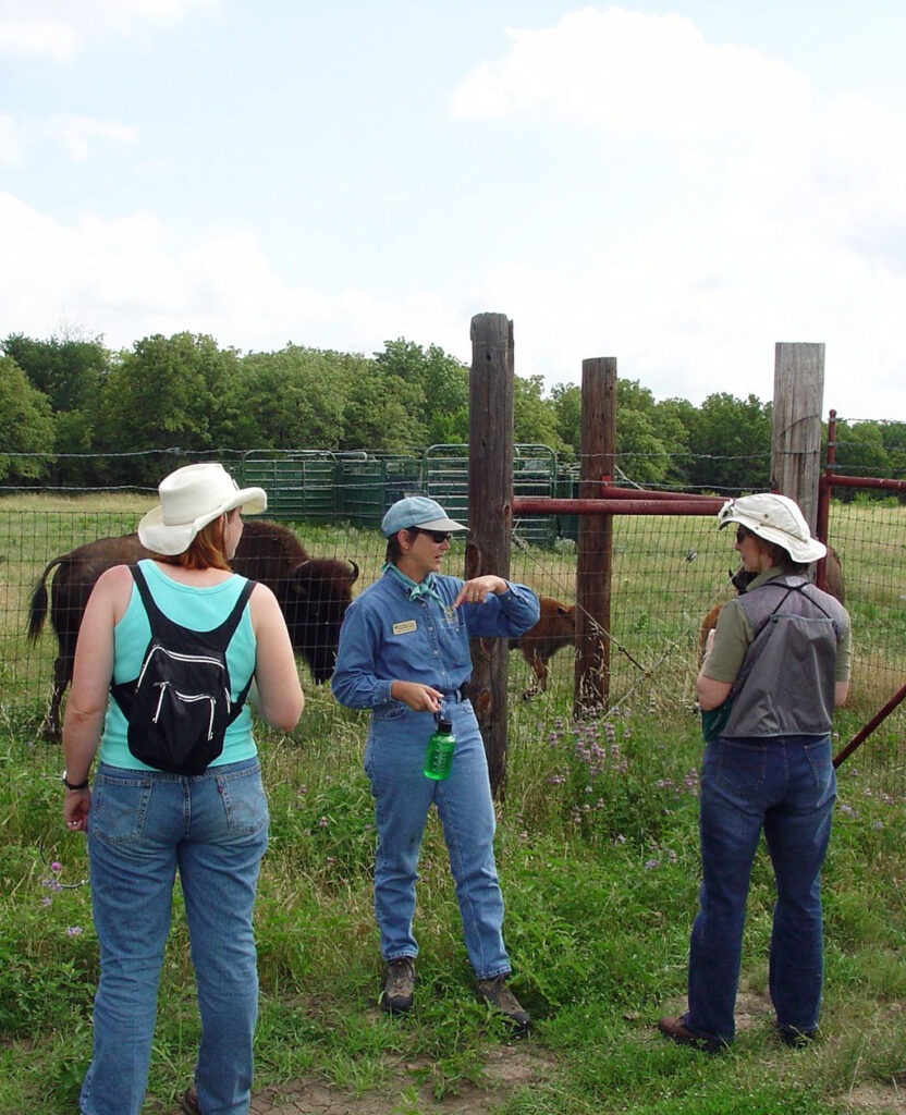 Suzanne Tuttle discussing the bison behind her during a field trip at the Fort Worth Nature Center
