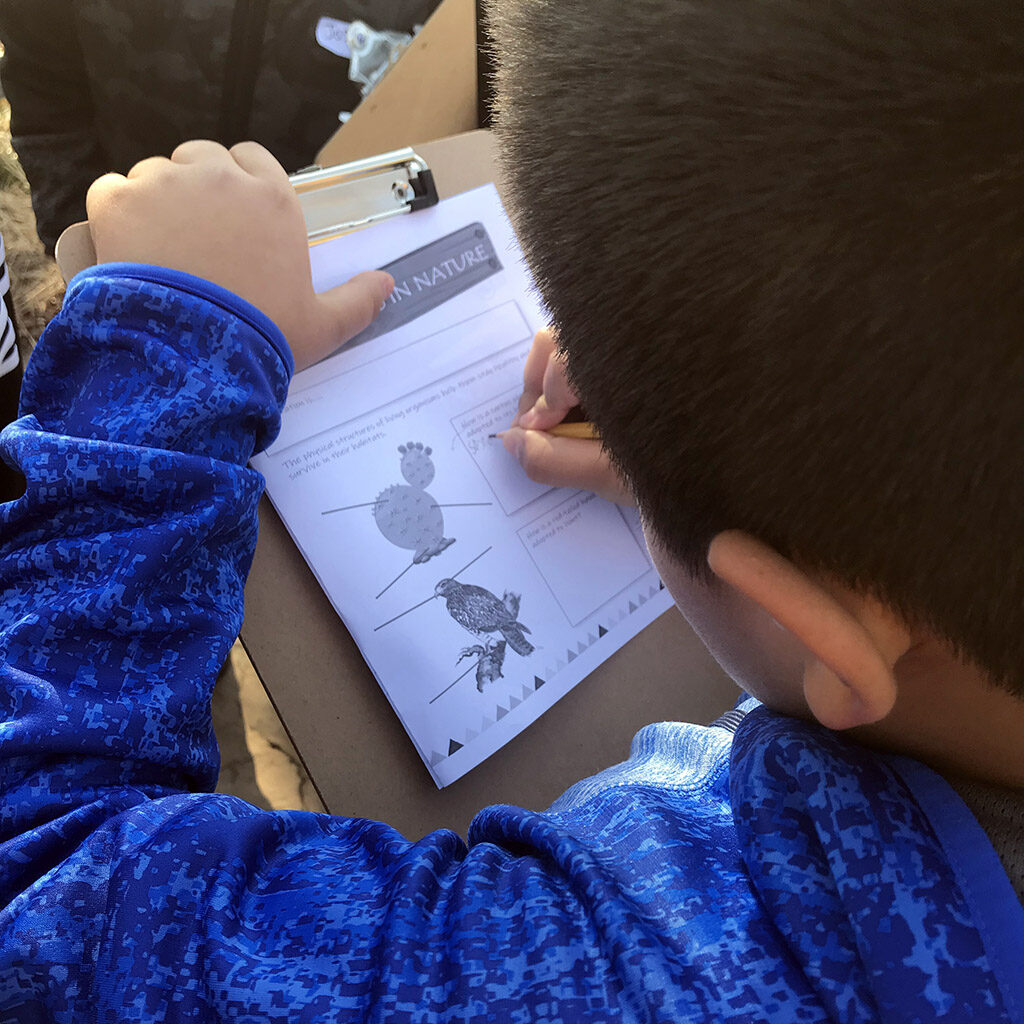 Young boy drawing in a notebook during Trails to Nature at the Fort Worth Nature Center