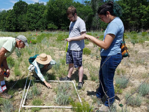 Greenhouse volunteers learning plant surveying at the Fort Worth Nature Center