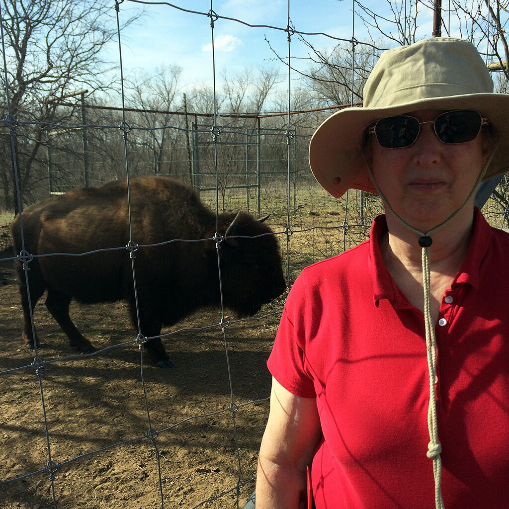 Friends member Jean Pirmann standing in front of a bison near the bison range fence at the Fort Worth Nature Center
